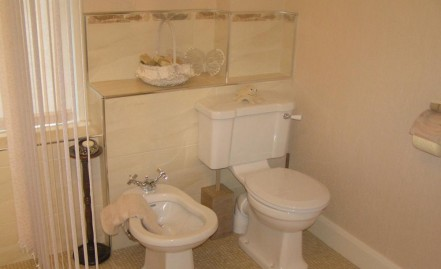 The Clifton toilet and bidet